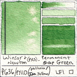 PG36 PY110 Winsor and Newton Professional Permanent Sap Green Watercolor Swatch Card Color Chart