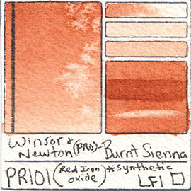 PR101 Winsor and Newton Professional Burnt Sienna Watercolor Swatch Card Color Chart