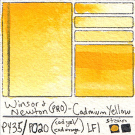 PY35 PO20 Winsor and Newton Professional Watercolor Cadmium Yellow Pigment Swatch Card