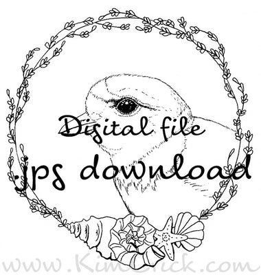 Digital File - Piping Plover Shore Bird Drawing Printable Adult Coloring Page Practice Painting Download