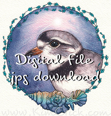 Digital File - Piping Plover Shore Bird Ocean Beach Dawn Color Clip Art Animal Nursery Painting Watercolor