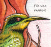 Digital File - Rainbow Bee Eater Bird Lady Watercolor Painting High Res Scan Printable Download