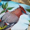 Bohemian Waxwing bird painting watercolor art White Nights Yarka St. Petersburg ATC ACEO