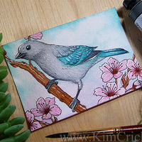 Daniel Smith Joseph Z's Cool Grey Watercolor Painting Blue-Gray Tanager Bird