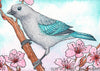 Blue-Gray Tanager Bird Joseph Z's Cool Grey Daniel Smith Watercolor Painting