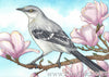 Northern Mockingbird artwork watercolor painting Daniel Smith Joseph Z's Neutral Grey demo review kimberly crick