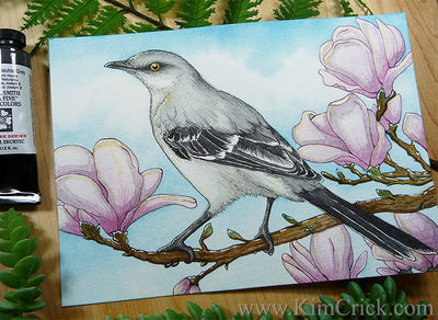 Northern Mockingbird audubon bird art flower magnolia tree painting florida state bird kimberly crick