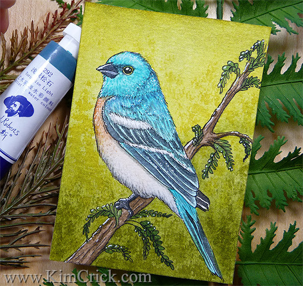 Lazuli Bunting bird art painting drawing Paul Rubens watercolor tube set refill review