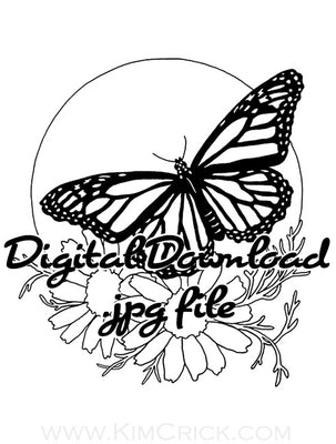 Digital File - Monarch Butterfly Chamomile Herb Daisy Flower Art Line Drawing Coloring Page Download