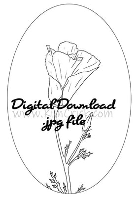 Digital File - Poppy Flower Drawing Adult Coloring Book Page Practice Floral Painting Printable Line Art