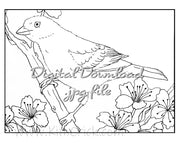 Digital File - Tanager Bird Printable Clip Art Line Ink Drawing Adult Coloring Book Digi Stamp Download