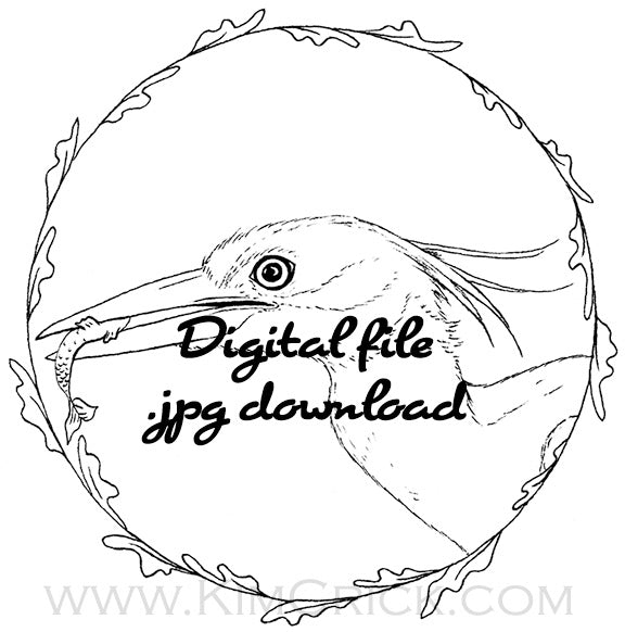 Digital File - Night Heron Bird Animal Artwork Printable Clip Art Line Ink Drawing Adult Coloring Book Digi Stamp Download