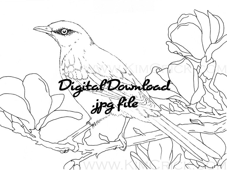 Digital File - Northern Mockingbird Line Art Drawing Printable Download For Practice Painting
