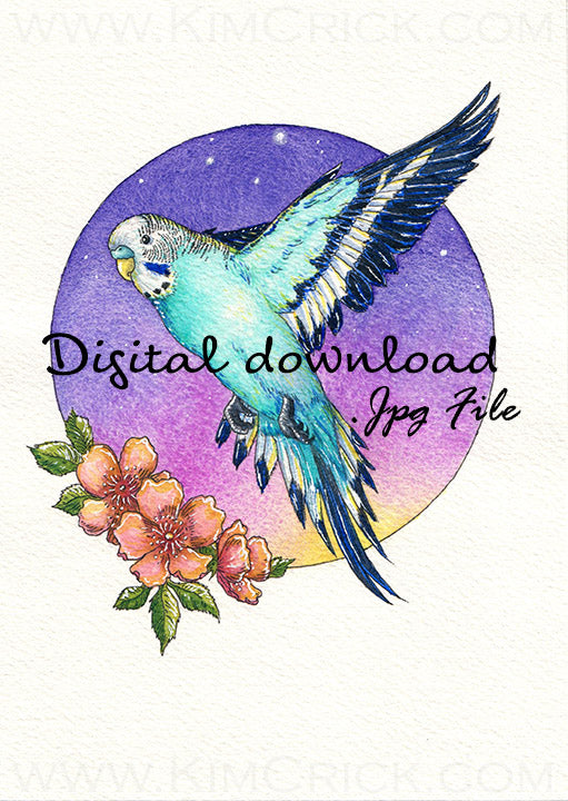 Digital File - Parakeet Teal Budgie Bird Color Painting Printable Clip Art Download
