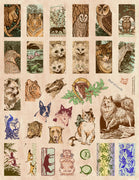 Unmounted Rubber Stamp Set Animal Domino #Anim-126