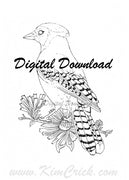 Digital File - Blue Jay Bird Line Art Drawing Printable Clip Art Download