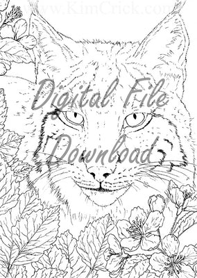 Digital File - Iberian Lynx Line Drawing Digi Stamp Printable Clip Art Download