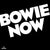 David Bowie - Bowie Now LP