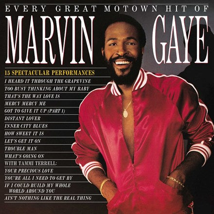 Marvin Gaye - Every Great Motown Hit Of Marvin Gaye : 15 Spectacular Performances LP
