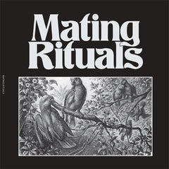 Martin Hayes - Mating Theme 7-Inch