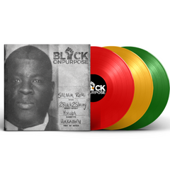 Salaam Remi - Black On purpose 3LP