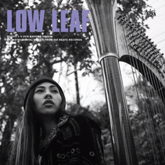 Low Leaf - Bakers Dozen LP + 7-Inch