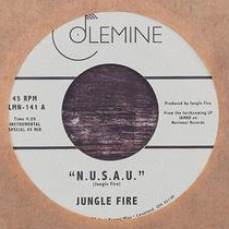 Jungle Fire - N.U.S.A.U. 7-Inch