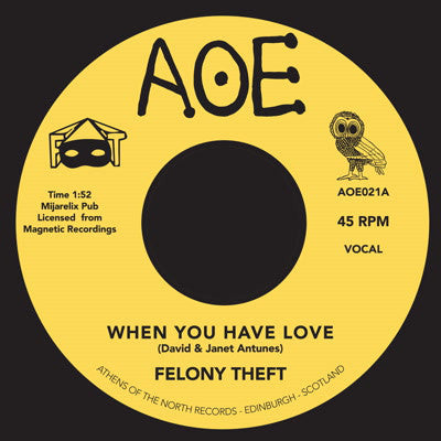Felony Theft - When You Have Love 7-Inch
