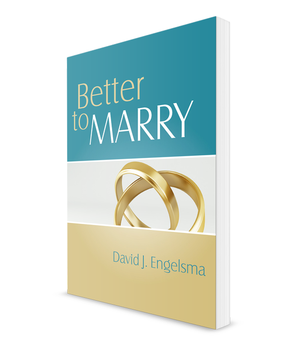 Better to Marry, Sex and Marriage in 1 Corinthians 6 and 7