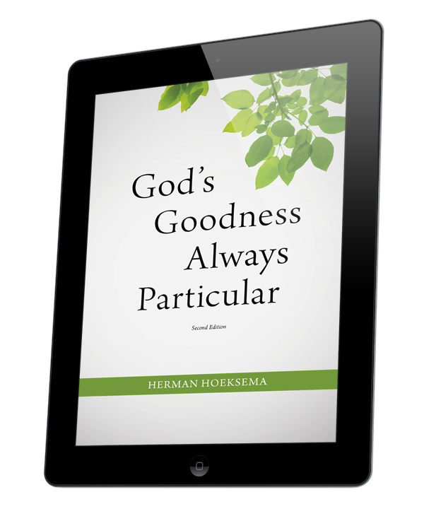 God's Goodness Always Particular (ebook)