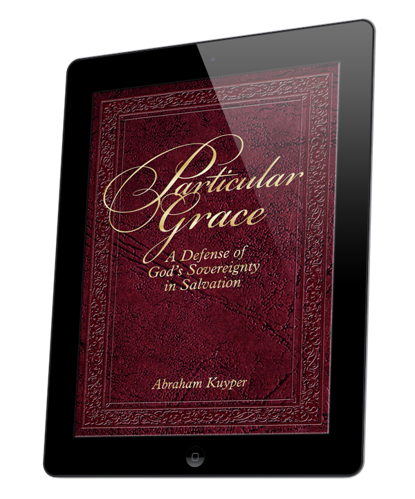 Particular Grace (ebook)