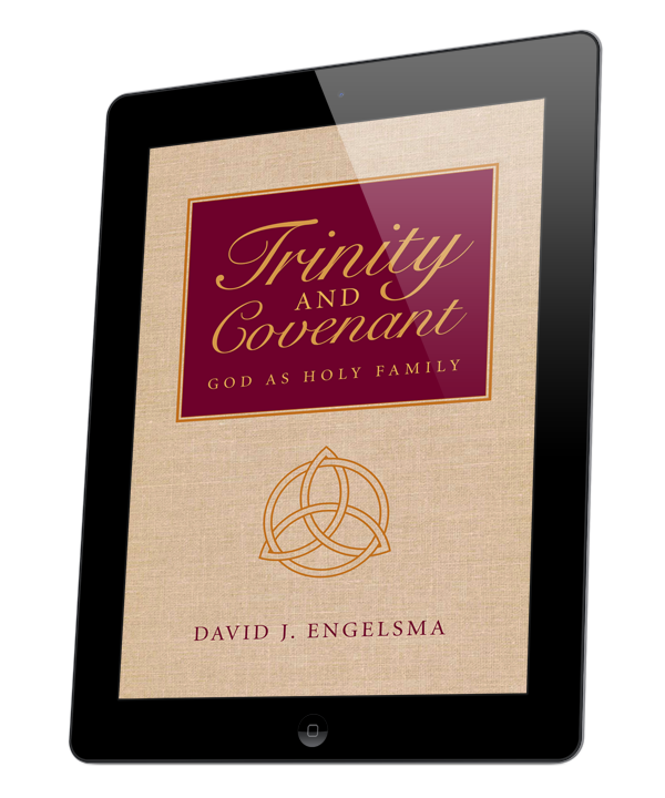 Trinity and Covenant (ebook)