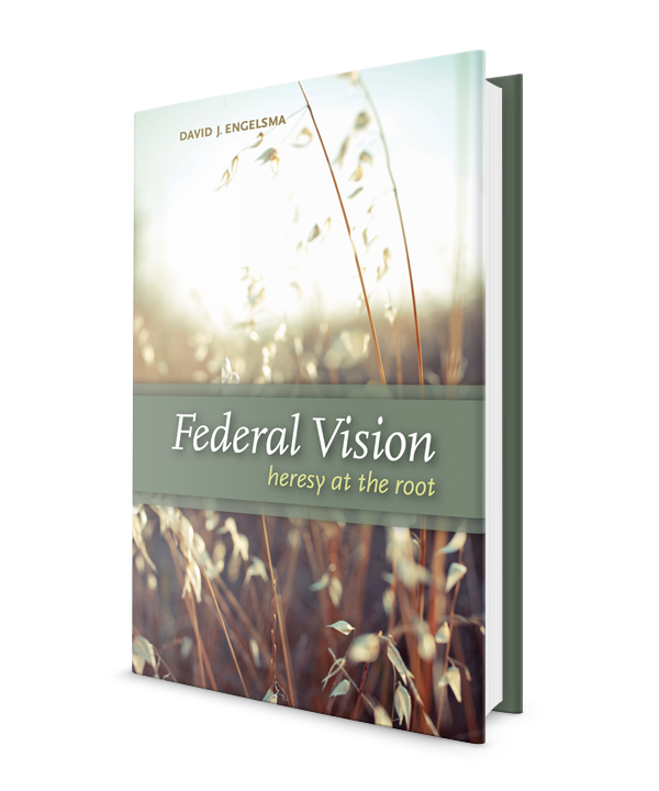 Federal Vision