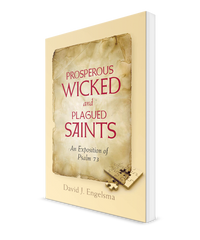Prosperous Wicked and Plagued Saints