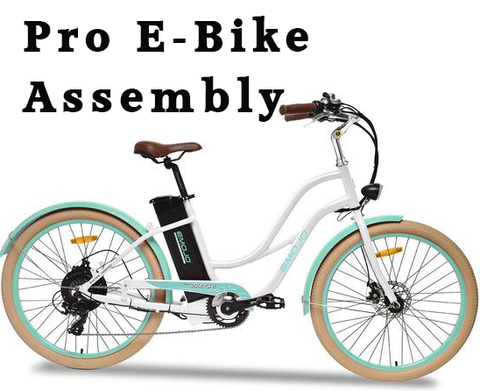 pro e-bike assembly