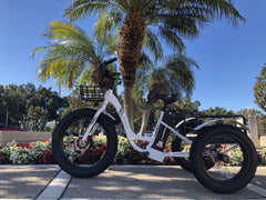 Emojo Caddy 500W Fat Tire Cargo E-Trike