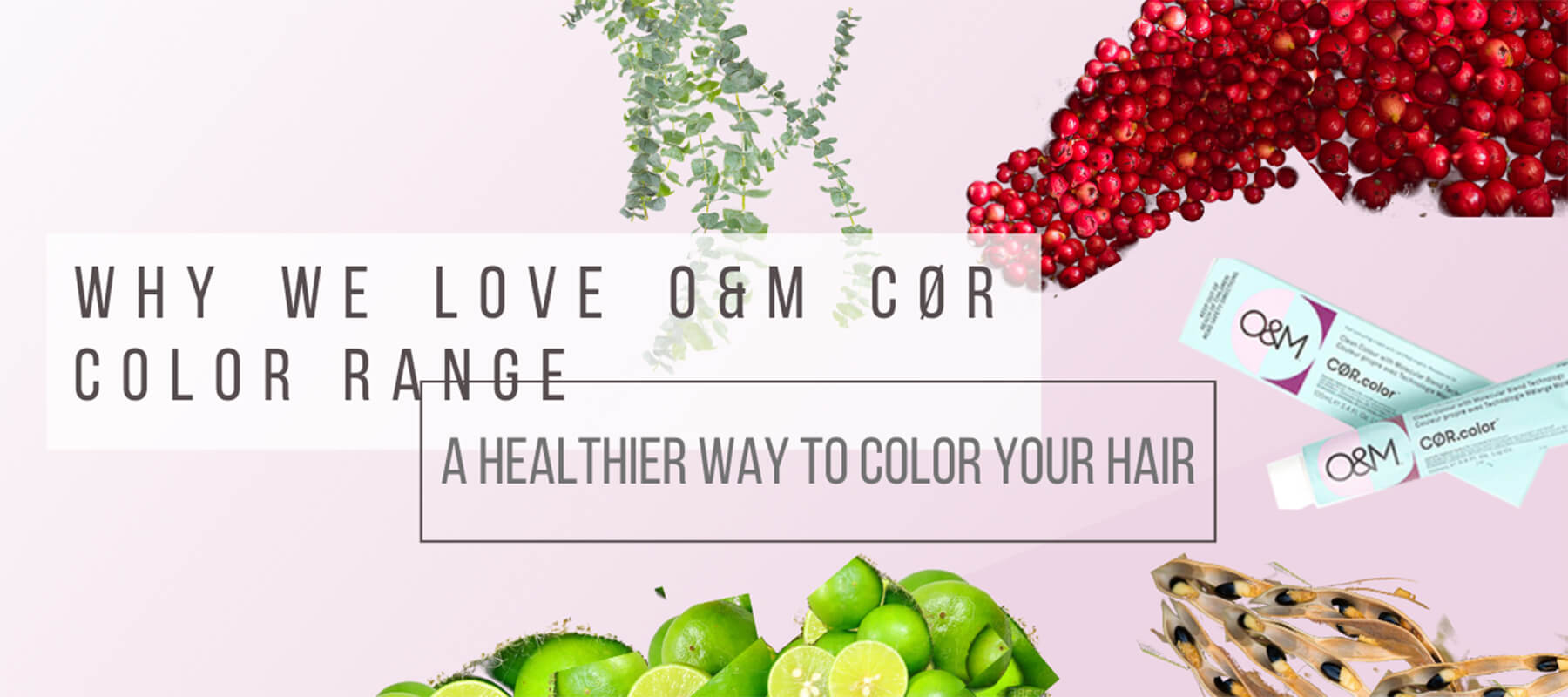 Healthier Way To Colour Hair graphic with botanicals