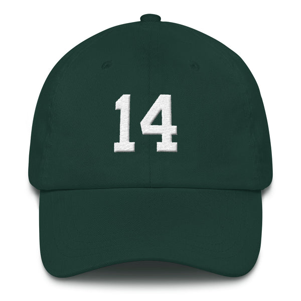 Sam Darnold #14 Dad Hat-Player Number Hat-Coverage Gear