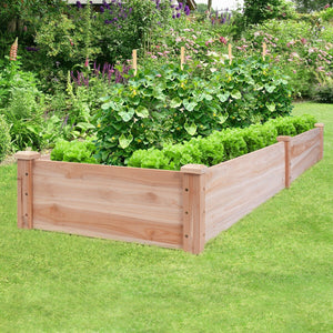 8 Ft by 2Ft Garden Vegetable Bed