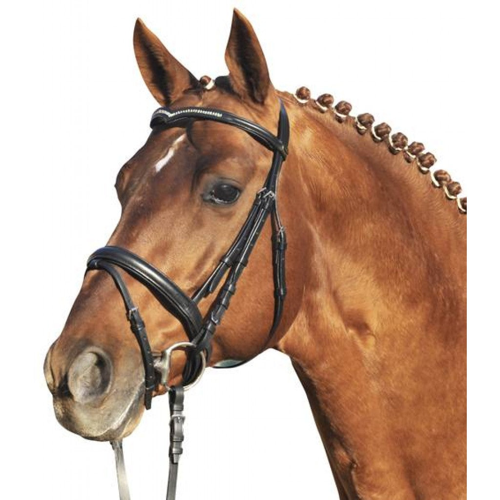 Bridle with flash noseband and V browband Art. No.: 5638 Over Size