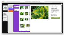 Load image into Gallery viewer, Digital Download - Crop Nutrient Deficiency Image Collection