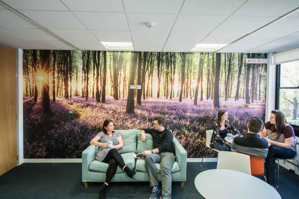 Premium Bluebell Wood Wall Mural (Laminated) in  by Vinyl Impression