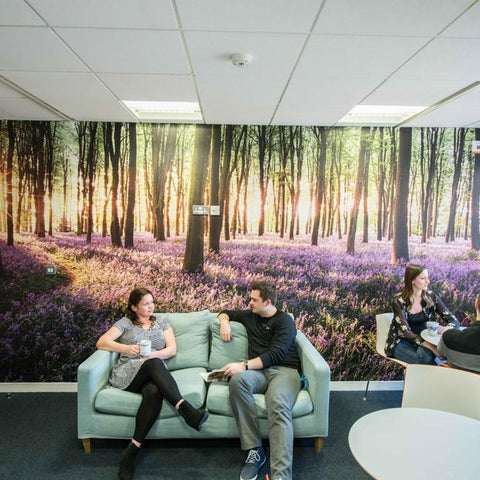 Premium Bluebell Wood Wall Mural (Laminated)