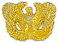 USA WARRANT OFFICER HAT PIN - HATNPATCH