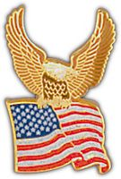 EAGLE WITH FLAG HAT PIN
