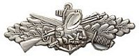 SEABEES COMBAT SERVICE HAT PIN