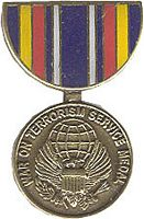 SERVICE WAR ON TERRORISM HAT PIN