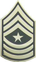 USA SERGEANT MAJOR E-9 HAT PIN
