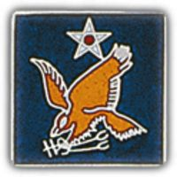 2ND AIR FORCE HAT PIN