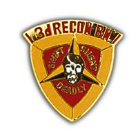 3RD RECON BN HAT PIN